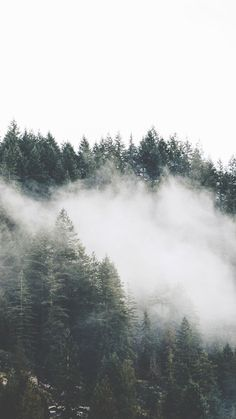 Beautiful Nature iPhone 7 & 7+ Wallpapers