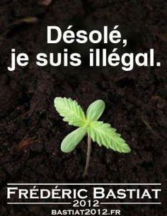 Désolé, je suis illégal.... #bastiat2012