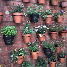 Hanging Plants On Fence, Hanging Flower Pots, Planters On Fence, Hang Plants On Wall, Front Door Plants, Flower Pot Art, Flower Pot Design, Hanging Gardens, Wall Plant Pot