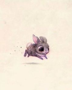 Little bunny Sídney Hanson