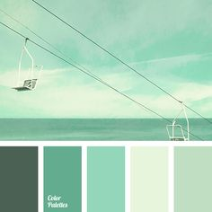 celadon, color of sea wave, combination of colors, Cyan Color Palettes, dark green, dark light green, gray-green tones, light green, menthol, mint color, selection of color, shades of emerald green, shades of mint color.