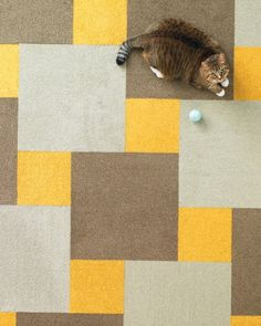The Pattern: Basket Weave  Similar to the designs often found on ceramic tile floors, this pattern is made of full-size carpet tiles surrounded by quarter-tile pieces. To make it more dynamic, mix different colors and textures; for example, try a more plush pile on the accent square. Martha Stewart Floor Designs with Flor Velvet Twist in Sunflower, Acorn, and Bisque; flor.com.