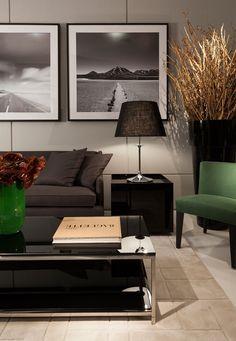 Colour combination of a living room,Christina Hamoui – 2013 Artefacto