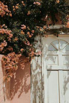 Lindsay and I had the best, most relaxing time in San Diego last week! We basica… Sponsored Sponsored Lindsay and I had the best, most relaxing time in San Diego last week! We basically just needed to escape this long… Continue Reading → Peach Aesthetic, Flower Aesthetic, Nature Aesthetic, Aesthetic Drawing, Aesthetic Colors, Aesthetic Vintage, Aesthetic Fashion, Aesthetic Clothes, Aesthetic Anime