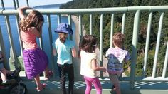 Urban Adventure: A Family Hike on the Tacoma Narrows Bridge - ParentMap
