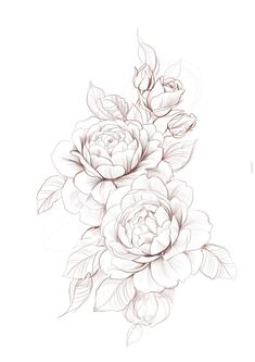 Stock vector of 'beautiful monochrome black and white dahlia… – Tattoo Designs Dahlia Tattoo, Peony Flower Tattoos, Flower Tattoo Drawings, Dahlia Flower, Flower Tattoo Designs, Tattoo Ideas Flower, Carnation Flower Tattoo, Rose Drawing Tattoo, Flower Tattoo Hand