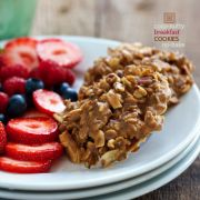 Family Fresh Cooking Thumbnail image for Coconutty Breakfast Cookies | No-Bake