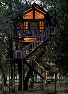 House on stilts in trees... This is actually my preferred option, gives the trees room to grow :-)