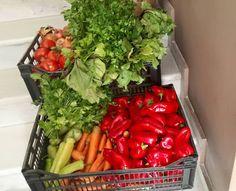 Παραδοσιακά Ζυμαρικά  -  'Εμνοστον: Φρέσκα λαχανικά από τοπικούς παραγωγούς κατευθείαν...