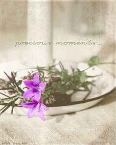 precious moments by odile lm