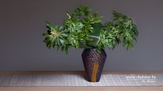 """This arrangement has some special emotional value for me, as it is the first arrangement in the vase I got for my """"The Sogetsu 90th Anniversary Commemorative Overseas Akane Teshigahara Award"""". Ikebana: Ilse Beunen"""