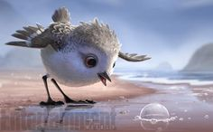 The inspiration for the six-minute short — about a hungry baby sandpiper learning to overcome hydrophobia — came from less than a mile away from Pixar Studios in Emeryville, California, where veteran Pixar animator and Piper director Alan Barillaro would run alongside the shore and notice birds by the thousands fleeing from the water but returning between waves to eat. Piper: Pixar's cutest new short-film hero gets first look | EW.com