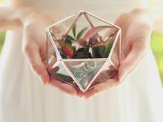 Mini Geometric Terrarium / Icosahedron / Ring Pillow by Waen