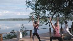 Is it yoga, tai chi, tae bo? Actually, it's the 'Tonga Stretch', a combination of all the above delivered by our very own ex-professional gymnast Anusa. Tae Bo, Tai Chi, Outdoor Furniture, Outdoor Decor, Gymnastics, Stretches, Safari, Activities, Day