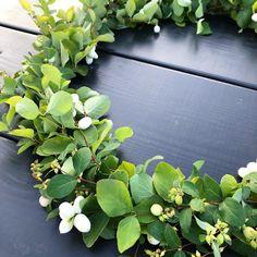 Tee itse lumimarjakranssi Plants, Diy, Bricolage, Do It Yourself, Plant, Homemade, Diys, Planets, Crafting
