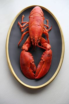 maine lobster roll photo by kathrynlumpkinphotography Lobster Art, Live Lobster, Lobster Dinner, Crab And Lobster, Canadian Lobster, American Lobster, Seafood Recipes, Cooking Recipes, Kitchen Art