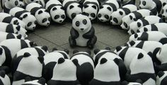 Pandas in Frankfurt, Germany - On the place in front of the opera in the german town of Frankfurt was a WWF event with hundreds of panda bears that should remember that there are not many members of this species left over.