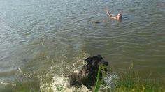 Zwemmen in het streekbos met de jongens