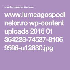 www.lumeagospodinelor.ro wp-content uploads 2016 01 364228-74537-81069596-u12830.jpg