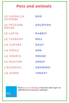 Do you have a soft spot for pets & animals? This time let's call your pet In French. Learn here + download the list in PDF format for free: https://www.talkinfrench.com/pets-animals/