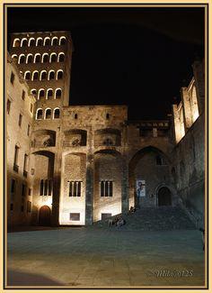 Palau  Reial Major by MILA@125, via Flickr