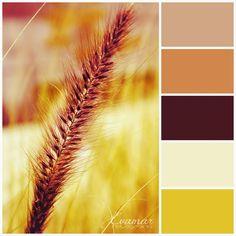 Evamar Fotografía: Paleta de colores de otoño