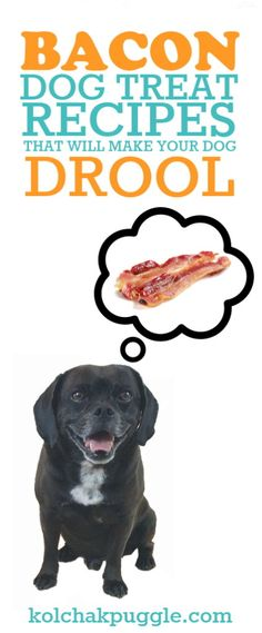 Bacon isn't always the healthiest ingredient for your dog since fatty foods can be a risk for pancreatitis. These bacon dog treat recipes will help you share a taste of the good stuff safely.
