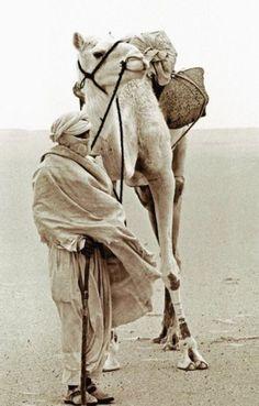 Tuareg and camel in the Sahara Desert, Morocco
