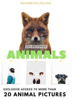 Animals Prints, Animal Prints for Nursery, Nursery Animals Animal Nursery, Animal Prints, Animal Pictures, Handmade Gifts, Animals, Etsy, Vintage, Art, Images Of Animals