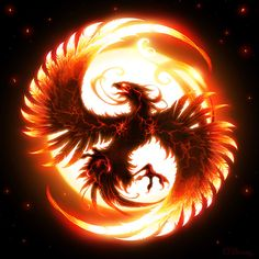 The Phoenix, bird of fire.