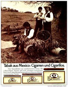 Original-Werbung/ Anzeige 1978 - BRANIFF CIGARREN / CIGARILLOS / TABAK AUS MEXIKO - ca. 200 x 240 mm