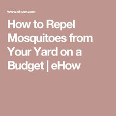 How to Repel Mosquitoes from Your Yard on a Budget | eHow