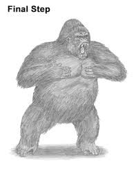 Image result for gorilla drawing