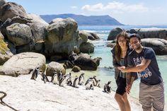 Kapstadt in Südafrika – Die schönsten Sehenswürdigkeiten, interessantesten Orte und Highlights