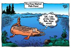Fish for thought