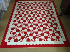 I found this amazing quilt at the Accuquilt Quilters Spotlight. See Show-and-Tell from other quilters or share your favorite. Fabric Cutter, Quilt Bedding, S Star, Cool Things To Make, Quilt Patterns, Red And White, Finding Yourself, Quilting, Sewing