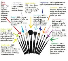 Different types of makeup brushes and their uses | Makeup Brushes ...