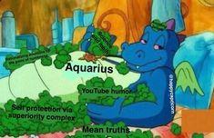 Aquarius Funny, Aquarius Art, Aquarius Traits, Aquarius Quotes, Zodiac Sign Traits, Aquarius Woman, Capricorn And Aquarius, Zodiac Signs Astrology, Zodiac Signs Aquarius