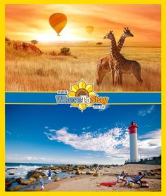 Let WhereToStay show you the best of both worlds. Whether it be the vast and endless Kruger Park wilderness epitomizing the true quality of Africa, or the 'forever summer' beaches of the KZN coastline, we will help you find the ideal accommodation to suit your budget. Kwazulu Natal, Kruger National Park, North Coast, Wilderness, South Africa, Beaches, Budget, Suit, World