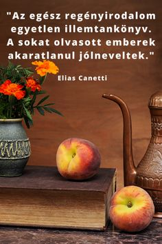 Book Lovers, Apple, Fruit, Books, Apple Fruit, Libros, Book, Book Illustrations, Apples