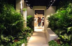 Off-White, the new label by Virgil Abloh, opened a store on Paterson Street in Causeway Bay last week. What makes the shop intriguing is its entrance. Off White Store, Architecture Events, Off White Clothing, Rosewood Hotel, Entrance Design, Welcome To The Jungle, Virgil Abloh, Concrete Jungle, Plant Design