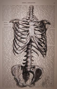 Skeleton  Art Print by Kit King, a wonderful artist I follow on Instagram