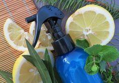 Recette : Spray assainissant fraîcheur sans alcool - Aroma-Zone