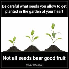 Seeds in your heart