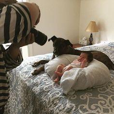 More baby photo shoot @joannevandalphoto