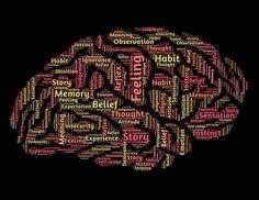 Le cerveau est encore l'objet de nombreuses recherches scientifiques. © Publicdomain by Pixabay