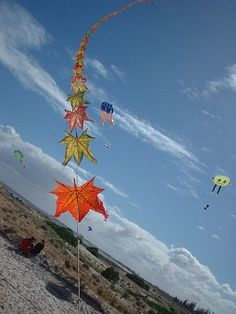 Colorful kites as a train of autumn leaves, by a Taiwanese kite master