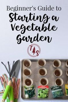 Beginner's Guide to Starting a Vegetable Garden @ www.thriveorsurvive.us
