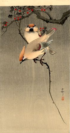Starlings and Cherry Tree Artist: Ohara Koson Born: Kanazawa, Japan - Died: Tokyo, Japan - Place of Creation: Japan - Style: Shin-hanga - Genre: bird-and-flower painting - Technique: woodblock print - Material: paper J Ohara Koson, Art Chinois, Art Asiatique, Art Japonais, Japanese Painting, Chinese Painting, Japan Art, Tokyo Japan, Japanese Prints