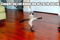 give 'em the ol' razzle~dazzle'